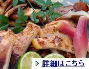 ika-wagi001-1.jpg