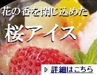 saku-aisu18-2.jpg