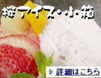 saku-aisu6-2.jpg