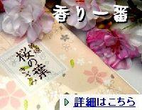 sakurahakizami00911.jpg