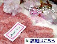 sakurahanabira00111.jpg