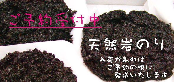 iwanori0011.jpg