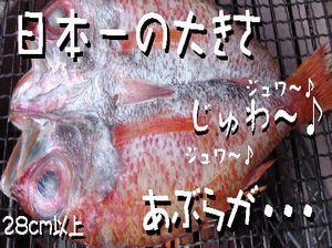 nodogurodaikanazawa.jpg