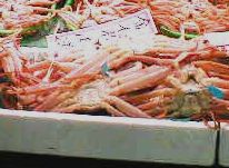 蟹.jpg