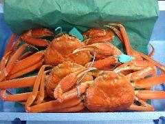 20110322蟹2.jpgのサムネール画像