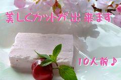 桜アイス0831.jpg