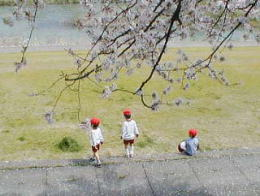 今日の幼稚園の遠足?